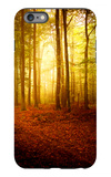 The Smell of Autumn iPhone 6 Plus Case by Philippe Sainte-Laudy