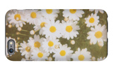 Daisies iPhone 6 Plus Case by Jena Ardell