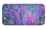 Redbud River Abstract iPhone 6 Plus Case by Vincent James