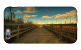 Marsh Path iPhone 6 Plus Case by Irene Suchocki