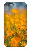Riverside Poppies iPhone 6 Plus Case by Vincent James