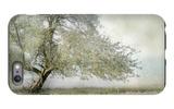 Tree in Field of Flowers iPhone 6s Plus Case by Mia Friedrich