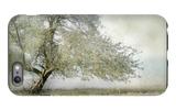 Tree in Field of Flowers iPhone 6 Plus Case by Mia Friedrich