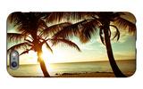 Bimini Sunset iPhone 6 Plus Case by Susan Bryant