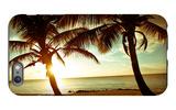 Bimini Sunset iPhone 6s Plus Case by Susan Bryant