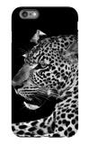 Leopard iPhone 6 Plus Case by  Donvanstaden