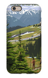 Hurricane Ridge, Olympic National Park, Washington iPhone 6 Case by  Lantern Press