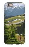 Hurricane Ridge, Olympic National Park, Washington iPhone 6 Case by  Lantern Press