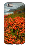 Summer Morning Coastal Color iPhone 6s Case by Vincent James