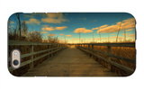 Marsh Path iPhone 6s Case by Irene Suchocki