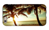 Bimini Sunset iPhone 6 Case by Susan Bryant
