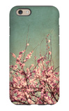 Springtime II iPhone 6 Case by Susan Bryant