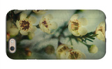 Flowers Strewn iPhone 6 Case by Irene Suchocki