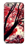 Fall Japanese Maples, Oakland iPhone 6 Case by Vincent James