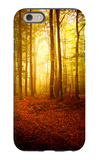 The Smell of Autumn iPhone 6 Case by Philippe Sainte-Laudy