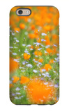 Spring Impressions, Merced River Canyon iPhone 6 Case by Vincent James