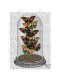 Multicoloured Butterflies in Bell Jar Prints by  Fab Funky