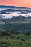 Spring Hills With Fog Petaluma Sonoma California Photographic Print by Vincent James