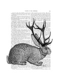 Jackalope Portrait 1 Poster by  Fab Funky