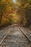 Autumn Railroad Tracks, White Mountain, New Hampshire Photographic Print by Vincent James