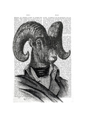 Mountain Goat Portrait Print by  Fab Funky