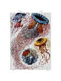Sea Anemone Kunstdrucke von  Fab Funky