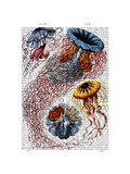 Sea Anemone Prints by  Fab Funky