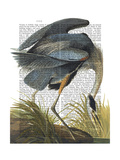 Blue Heron 1 Prints by  Fab Funky