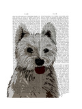 West Highland Terrier Plain Posters by  Fab Funky