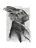 Rabbit Portrait Profile Premium Giclee Print by  Fab Funky