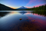 Trillium Fever, Mount Hood, Oregon Photographic Print by Vincent James