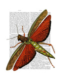Vintage Grasshopper Premium Giclee Print by  Fab Funky