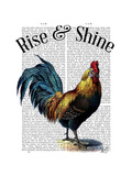 Rise and Shine Premium Giclee Print by  Fab Funky