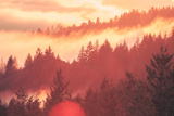 Sun Burned Fog Mount Tamalpais, Marin County, San Francisco Photographic Print by Vincent James