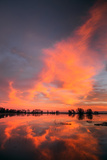 Marsh Sunset Reflections, Merced Wildlife Refuge Photographic Print by Vincent James