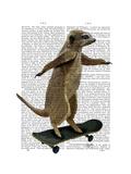 Meerkat on Skateboard Premium Giclee Print by  Fab Funky