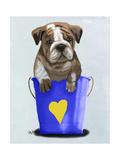 Bulldog Bucket of Love Blue Premium Giclee Print by  Fab Funky