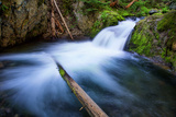 Majestic Creek Water Flow, Mount Hood Wilderness Photographic Print by Vincent James