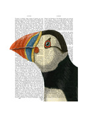 Puffin Portrait Print by  Fab Funky
