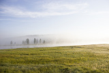 Fog Hovers over Water in a Grassy Landscape Photographic Print by Stacy Gold