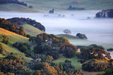 April Morning in the Petaluma Hills, Sonoma County, Northern California Photographic Print by Vincent James