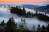 In A Dream of Fog Mount Tamalpais San Francisco Photographic Print by Vincent James