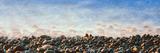 Stones at Calumet Park Beach, La Jolla, San Diego, California, Usa Photographic Print by Panoramic Images