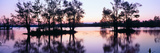 Sunset over Wildlife Refuge of Lake Fausse Pointe State Park, Louisiana Photographic Print by Panoramic Images