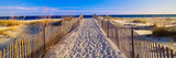 Pathway and Sea Oats on Beach at Santa Rosa Island Near Pensacola, Florida Photographic Print by Panoramic Images