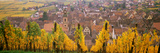 Elevated View of the Riquewihr and Vineyards in Autumn, Alsace, France Photographic Print by Panoramic Images