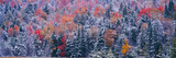 Snow and Autumn Trees, Adirondack Mountains, New York State Photographic Print by Panoramic Images
