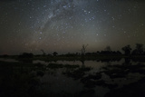 The Milky Way and Zodiacal Light over the Okavango Delta Photographic Print by Sergio Pitamitz