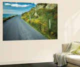 Seaside Road Wall Mural by Dennis Frates