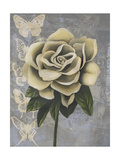 Blissful Gardenia II Premium Giclee Print by Grace Popp